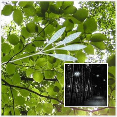 Solar Energy Leaf Shaped Street Lights - Invisible Streetlight
