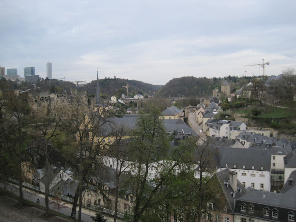 2011 - Luxembourg