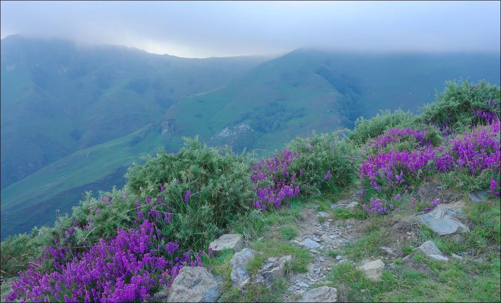 Baïgura via base de Loisirs ( Pyrénées-Atlantiques 64 ) AA Rando