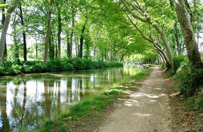 Canal du Midi : ma participation au concours