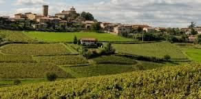 #Chiroubles Producers Beaujolais Region France Page 3