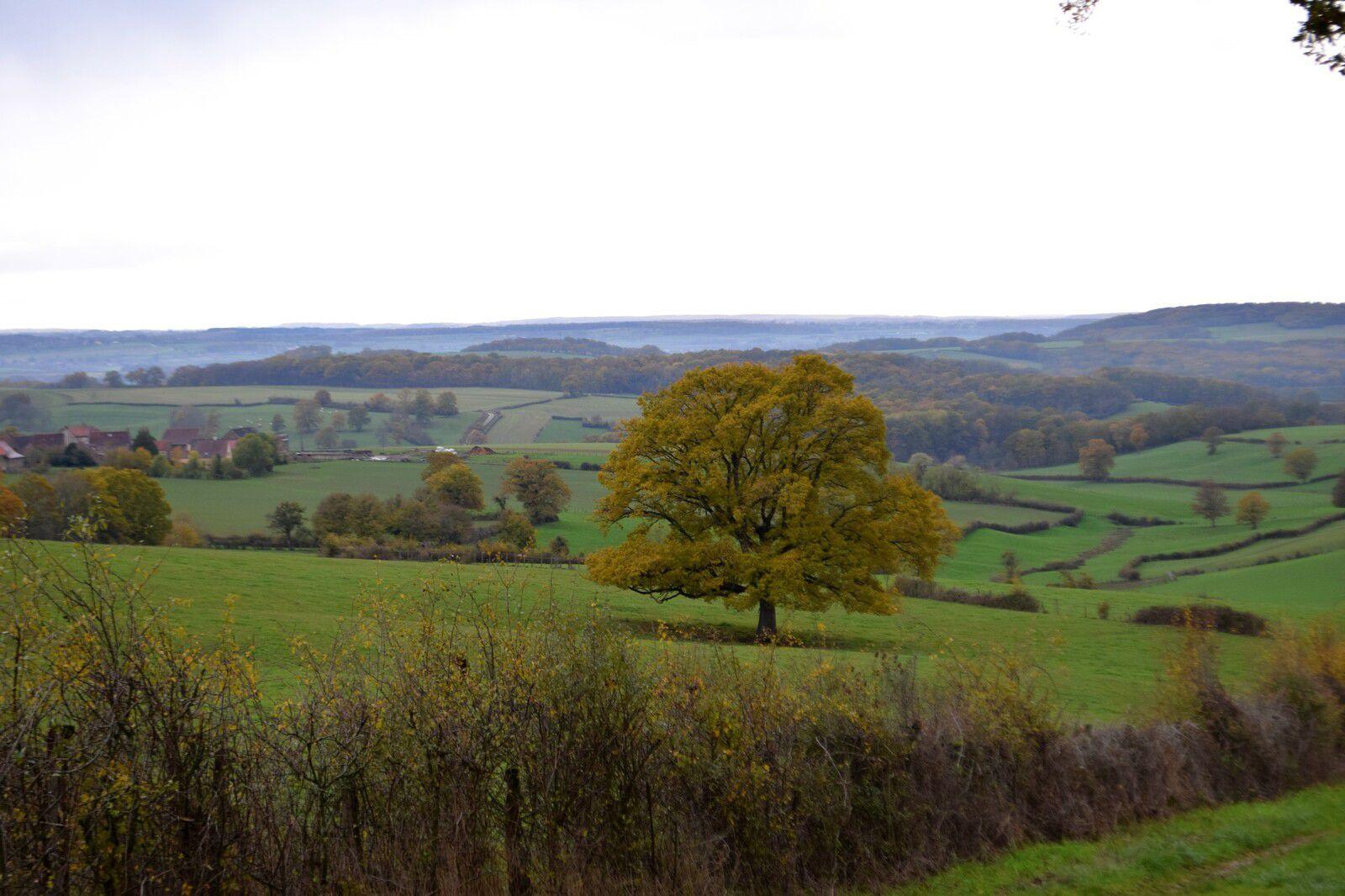 Paysages d'automne en Morvan