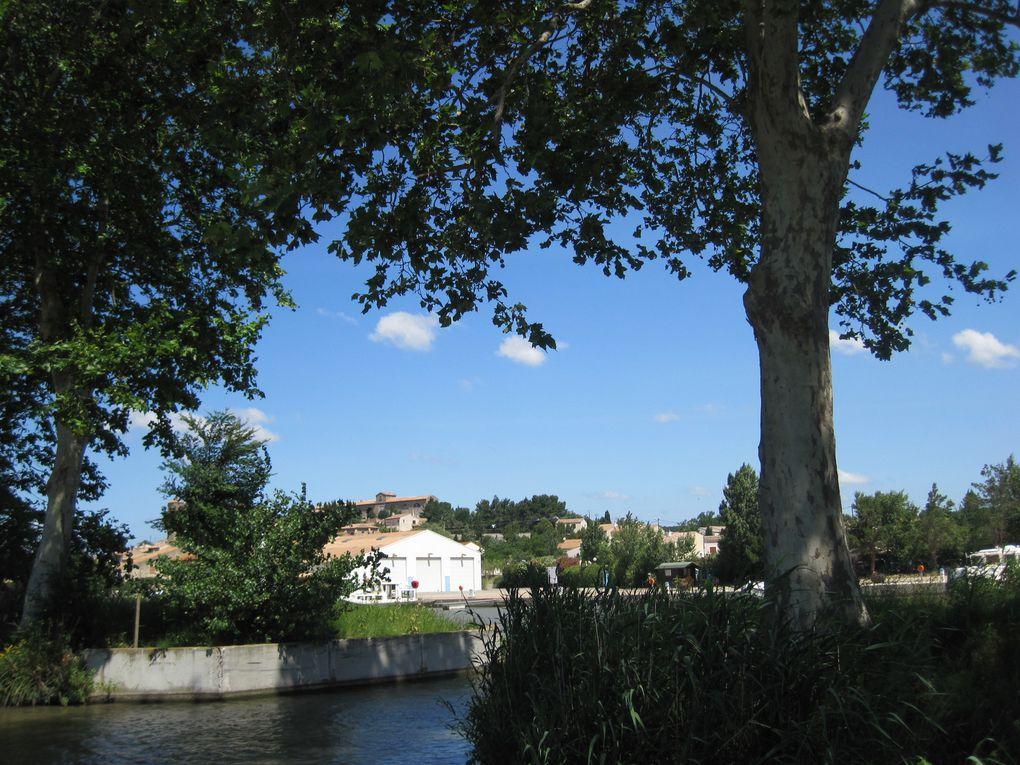 2014 - Canal-du-Midi 1
