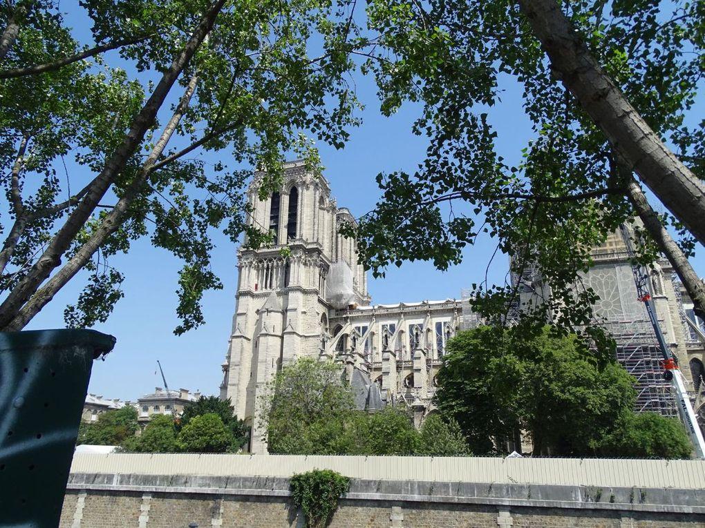Souvenir... Suite... Notre-Dame aujourd'hui...