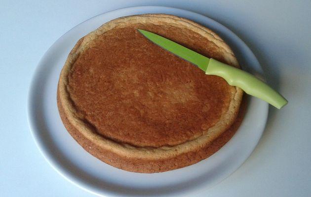 Gâteau à la noix de coco [sans beurre]