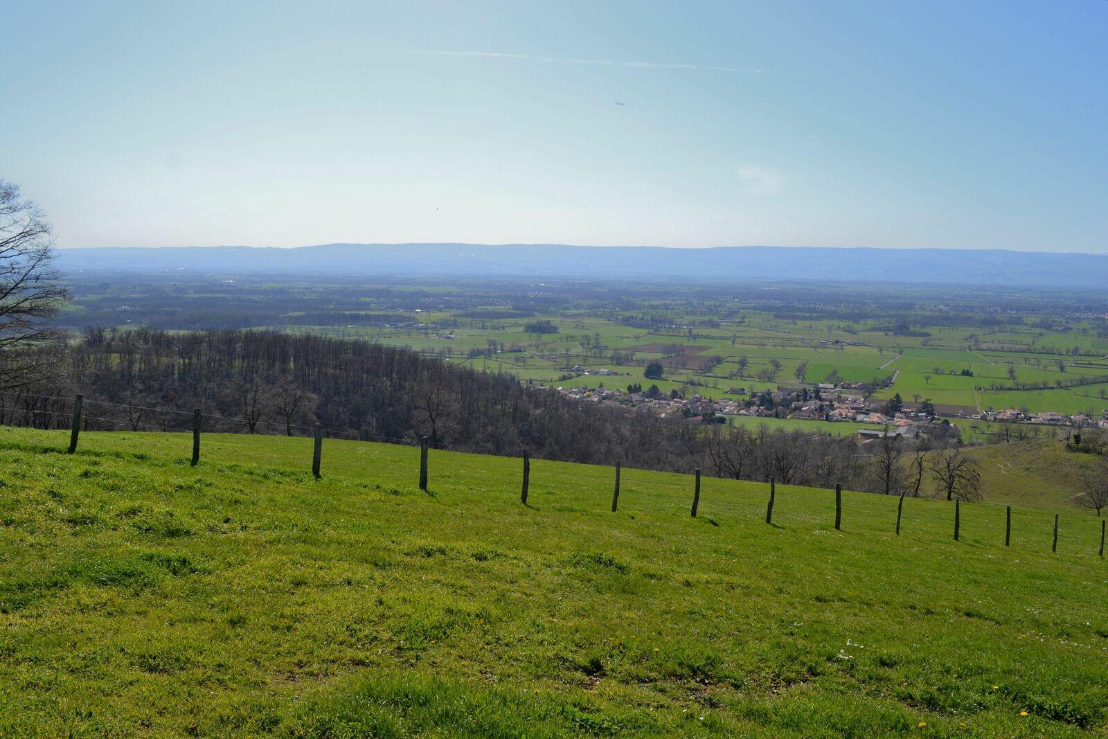 Promenade ensoleillée sur les hauteurs de Bellegarde-en-Forez dans la Loire!