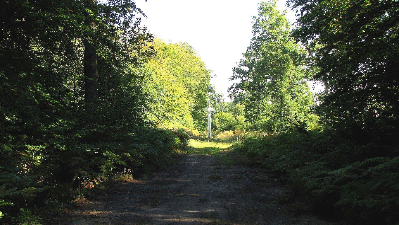 le carrefour du Camp de Senlis