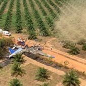 Une dizaine de morts dans un crash aérien en Colombie