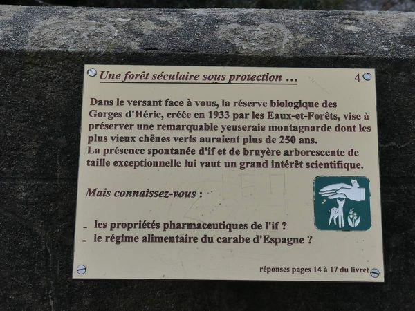 Gorges d'Héric Mars 2019