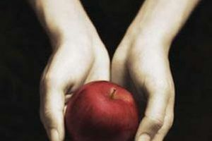 Twilight, tome 1 : Fascination - Stephenie MEYER