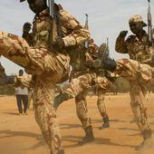 Financement du G5 Sahel : une demi-victoire de la France à Washington