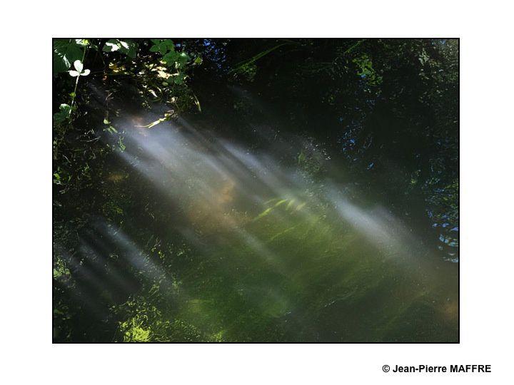 Sous le soleil, un modeste cours d'eau peut prendre soudain l'apparence d'une aquarelle.