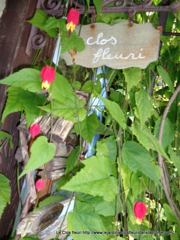 Mon jardin Le Clos fleuri en octobre 2019