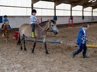 Stage équitation Comines 31/07-04/08/2017
