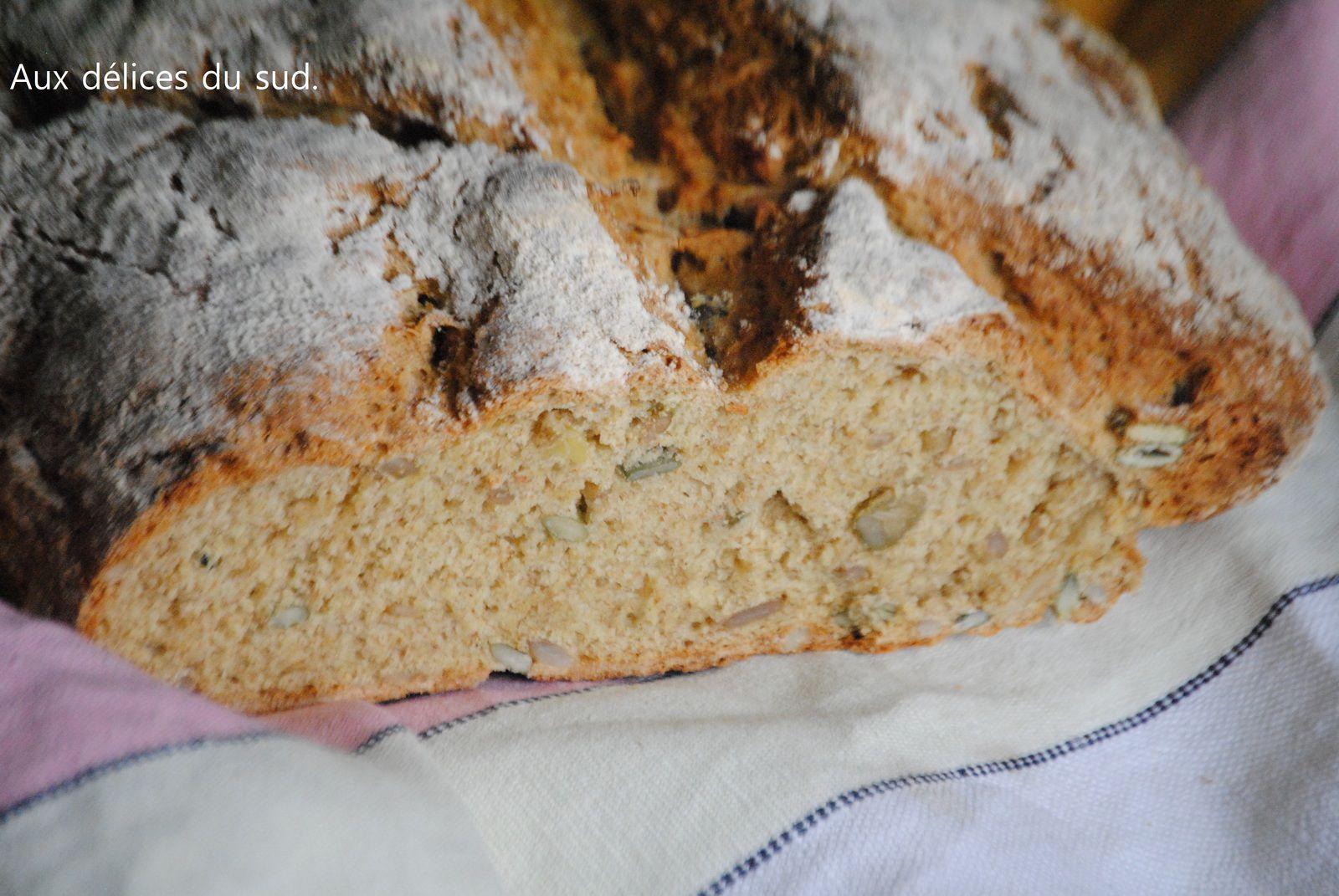 Irish soda ( pain irlandais aux graines ) .