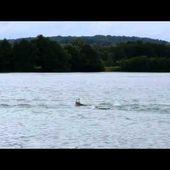 @DavidSandona Ma course à Montbéliard ... - Le Dauphin Corse