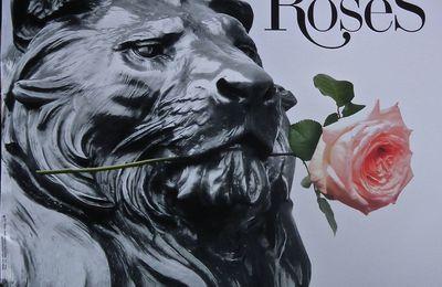 Des pas autour des roses! 1