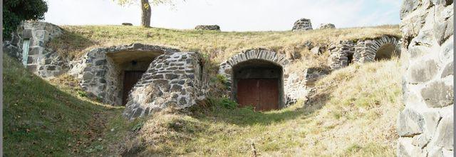 Les caves et la vigne à Chateaugay