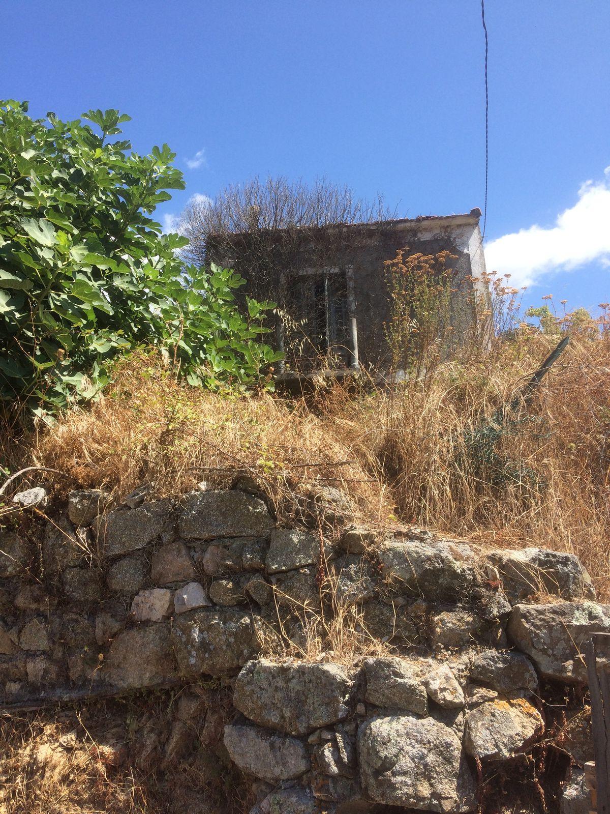 La maison de Rosembly à Poggiolo, maintenant propriété d'Alexis Chiti, a-t-elle hébergé les manuscrits de Céline? © Michel Franceschetti - août 2021