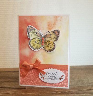 de nouveaux papillons