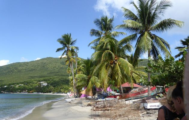 Etat de notre AME: Grande Anse