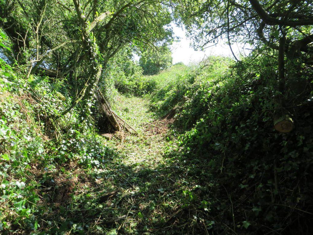 Ouverture du sentier de Runeven. Mai-Juin 2016