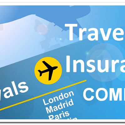 Why Travelers Should Consider Travel Insurance Companies Before Traveling? - cookisfun19022008.over-blog.com