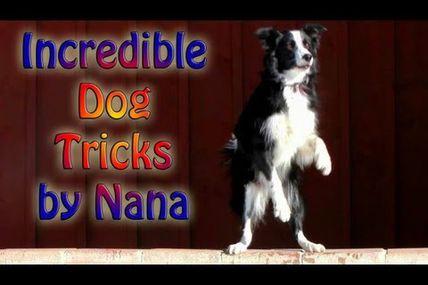 Et encore des tricks: Nana n'arrête jamais!