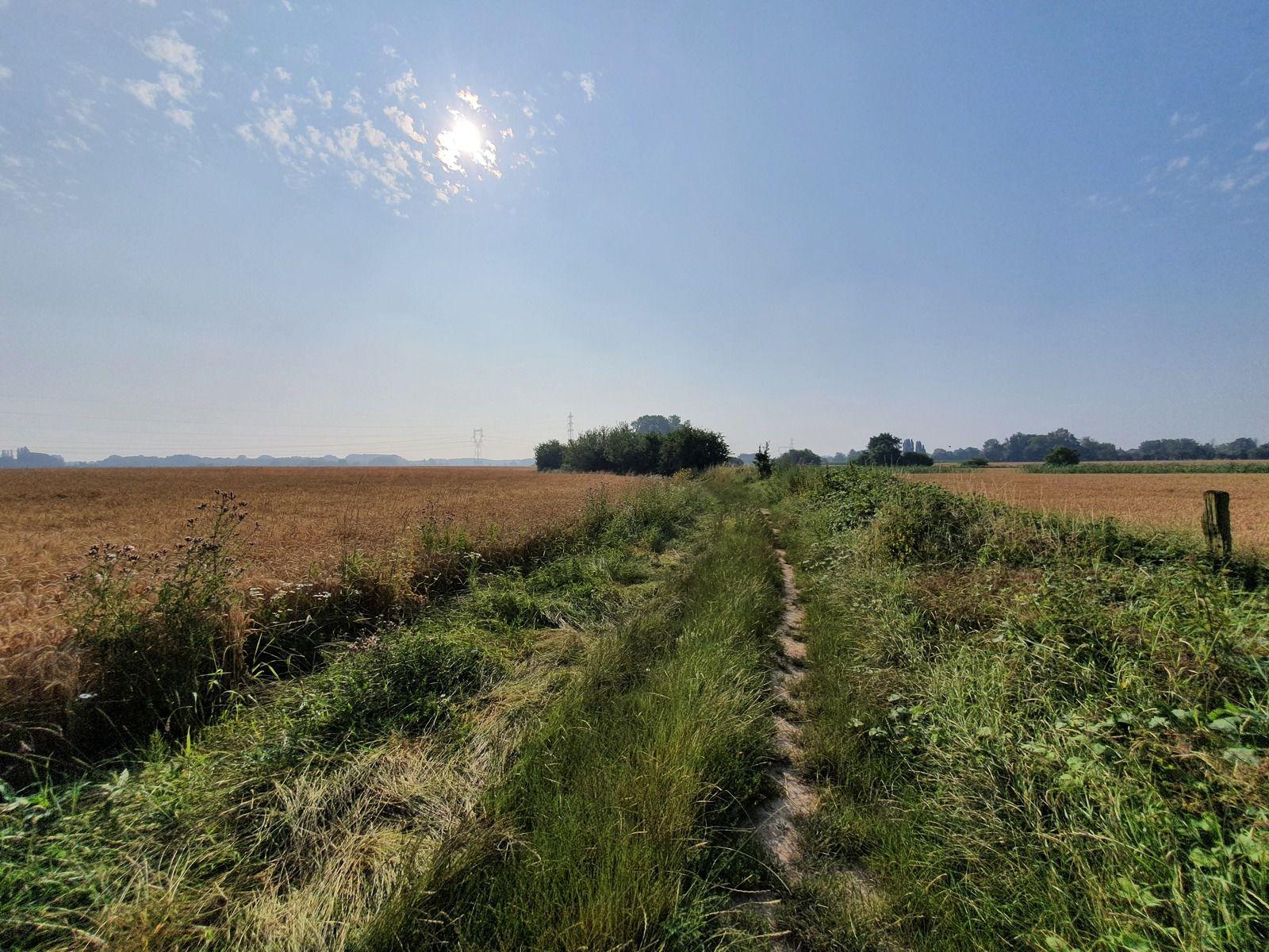 Chemin du Bois de la Rive et chemin de Laromé, à Wavrin