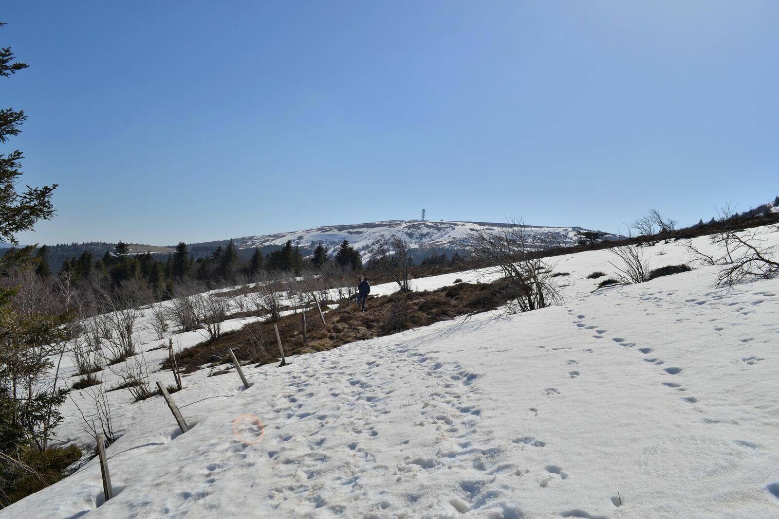 Petite balade d'hiver sur les hauteurs de Chalmazel dans la Loire!