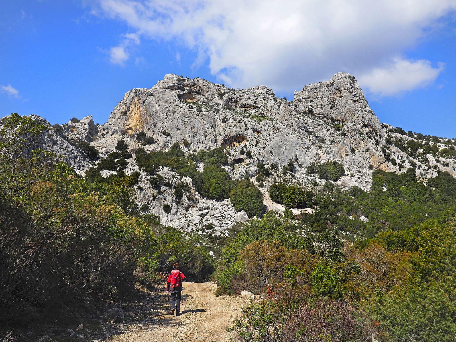 Plus haut sur les plateaux des Supramonte de Baunei, la serra Oselli et ses espaces sauvages (euphémisme).