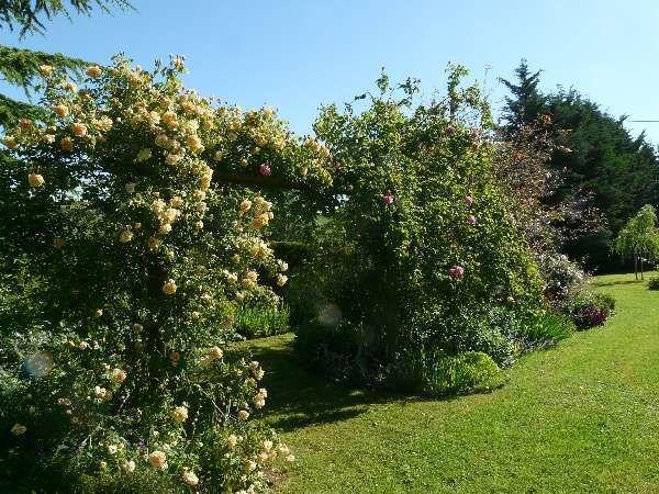 Quelques photos de ma visite au jardin d'Entêoulet - Gers