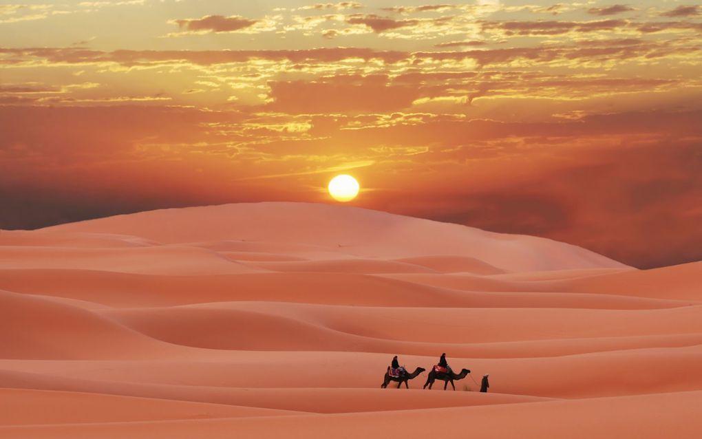Imágenes de Sáhara Occidental y de los campos de refugiados de Tinduf(Argelis).- El Muni.