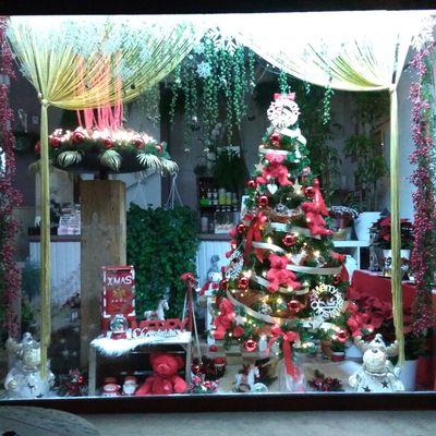 Monelle Fleur Vitrine de Noël Algrange