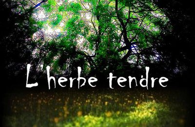 L'herbe tendre - Projections