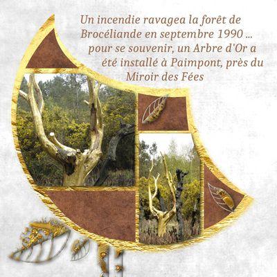 Brocéliande - échappée en Ille et Vilaine : Paimpont et Saint Péran