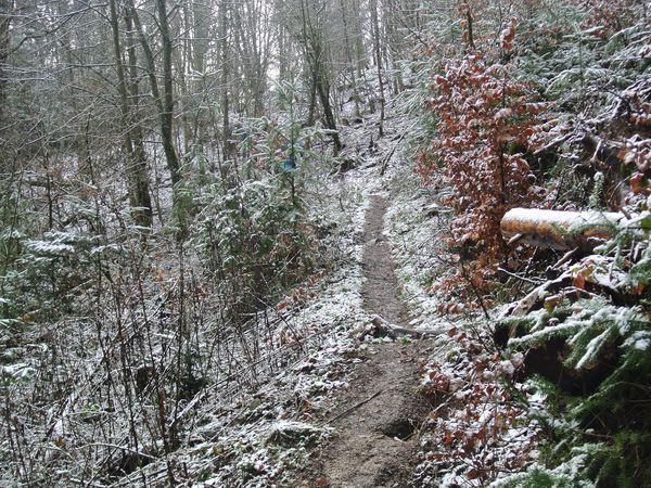 """La montée au Munsteraeckerlé (pluie, neige,ruisseau en crue): """"Il a neigé à Port-au-Prince, Il pleut encore à Chamonix, On traverse à gué la Garonne..."""""""