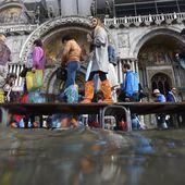 VIDEO. A Venise, la place Saint-Marc inondée par la montée des eaux