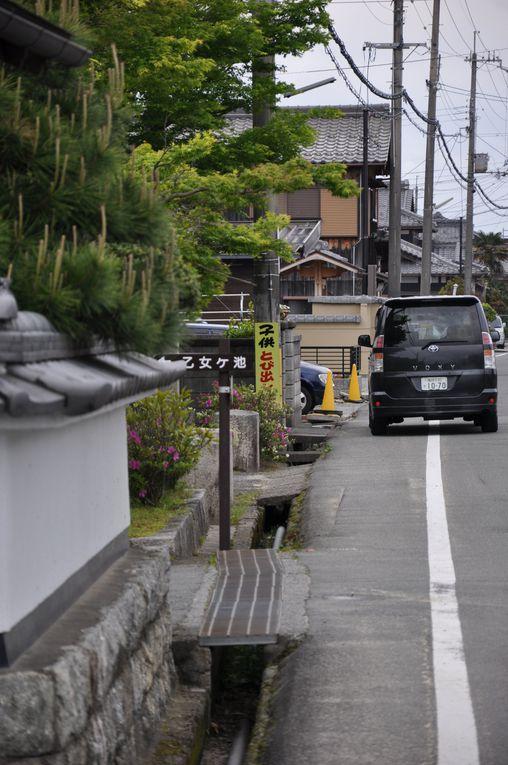Album - 12-La torii de Takamatsu