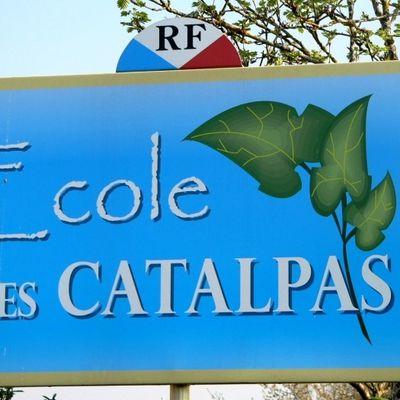 Ecole des catalpas villemandeur