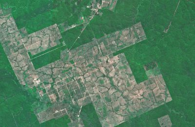 La déforestation en Amazonie à travers 20 ans d'images Spot
