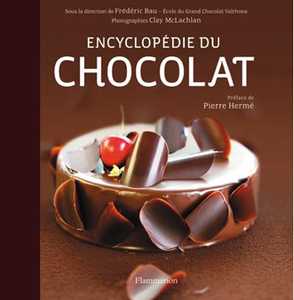 TARTE EXTRAORDINAIREMENT CHOCOLAT DE FREDERIC BAU