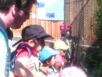 Centre Jean Jaurès - Zoo de Lille - 10 juillet
