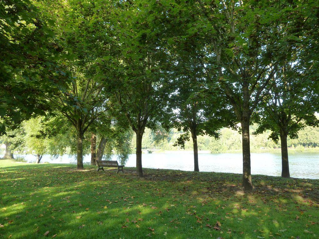 Bel environnement apaisant.. les bords de Seine face à l'île du Berceau et l'île du Barbier. Bien que nous soyons en début d'automne, les arbres sont toujours verts.....
