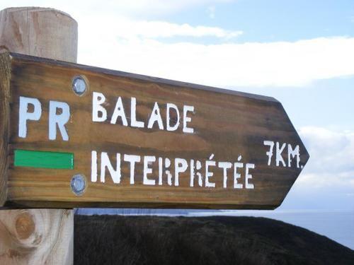 le cap frèhel, son cap, son phare, ses bruyéres, ses ballades, ses grandes falaises et ses grandes plages de sables fin , enfin quoi la vie douce en Bretagne