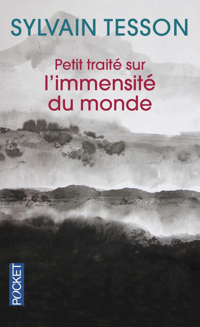 Sylvain Tesson, Petit traité sur l'immensité du monde, lecture, avis, critique, chronique