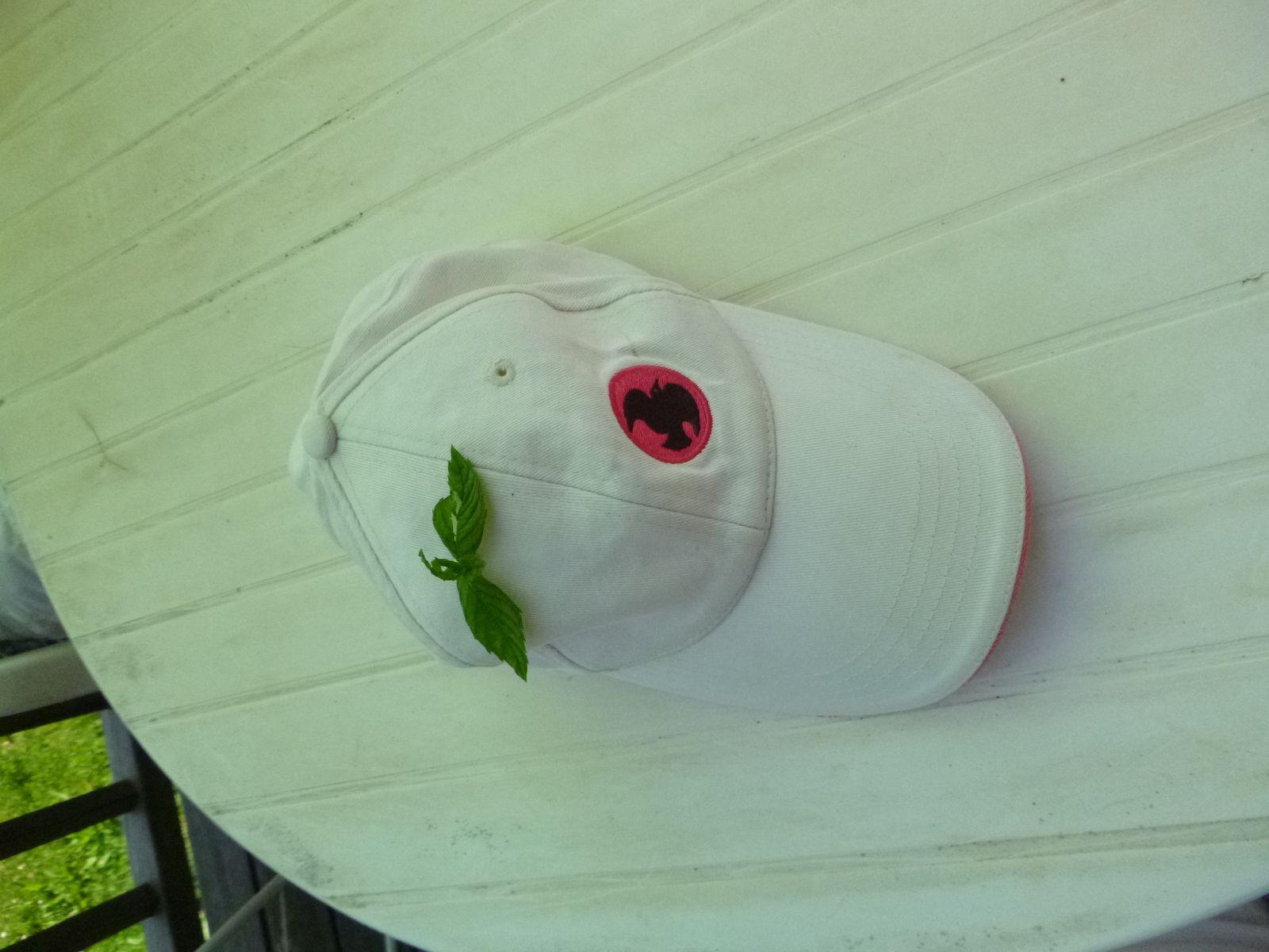 Même la casquette a apprécié la menthe du jardin...