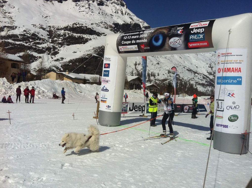 Bessans : Championnats de France de chiens de traineaux