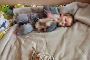 Babylook 2015 - 9 : pyjama Noukie's