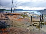 AUTOMNE 2018 : Jour 10 suite / Yellowstone Nord - Mammoth Hot Springs